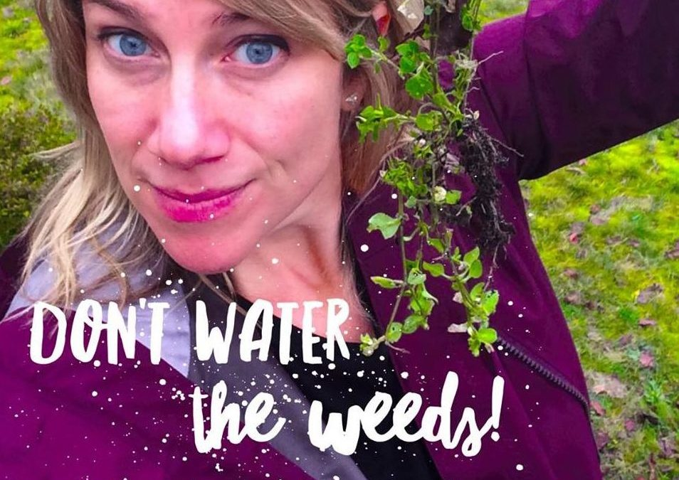Don't Water the Weeds!